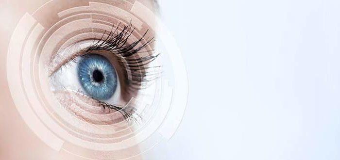 Optic-Nerve